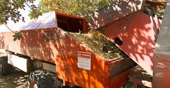 Nut Harvesting Equipment - Bankout