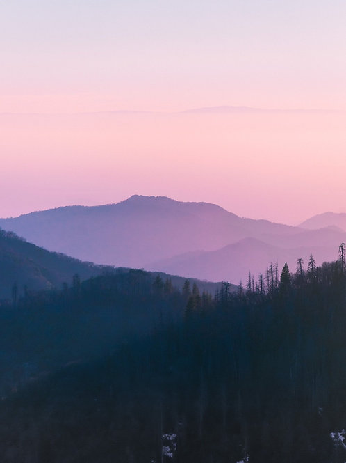 Sunset in Sequoia