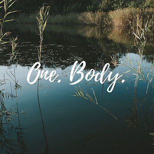 one body.jpg