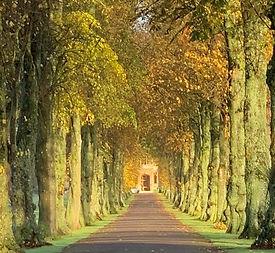 Royal Agricultural University Driveway