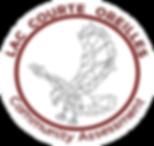 community assessment logo.png