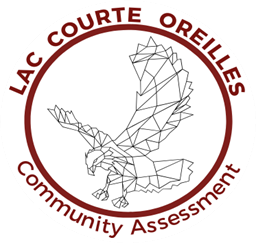 community assessment logo.png