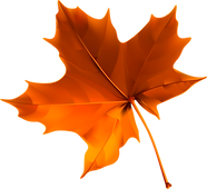 Fall-Leaves-PNG-Pic.png