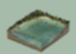poster of SWIM COURSE.png