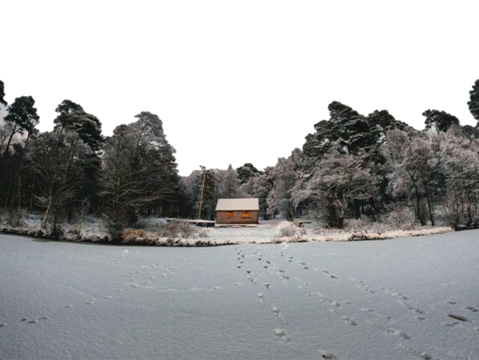 Winter dipper page photo.png
