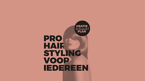 Pro hairstyling voor iedereen.png