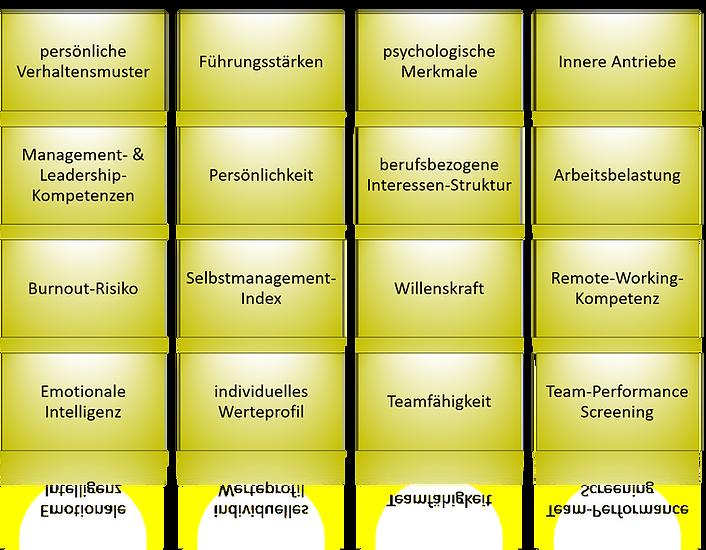 Analyse-Arbeitspsychologische-Themenfeld