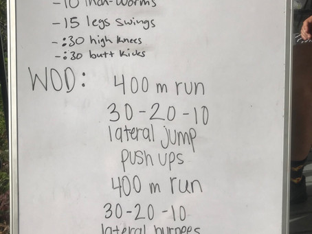 Home Workout: Day 17 (4/2)