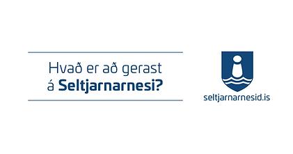 Fasteignasala Seltjarnarnes.png