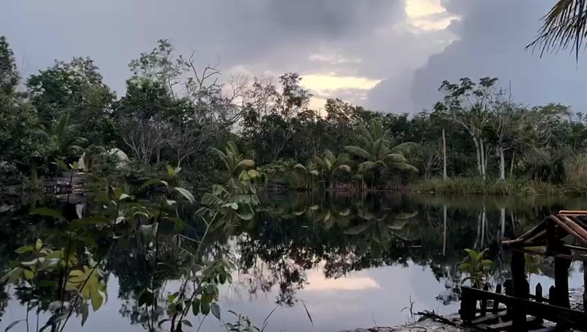 cenote timelaps.mp4