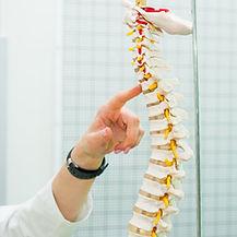 Provider pointing at model spine