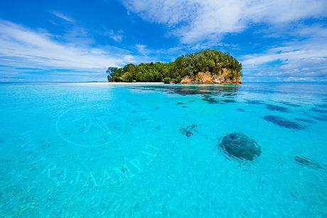 Island in Raja Ampat's Dampier Strait