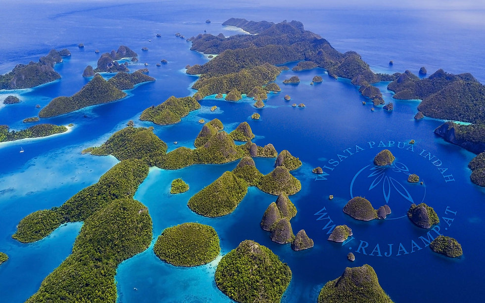 Wisata Papua Indah Raja Ampat.jpg