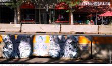 Chalk Art 2020 00472.jpg