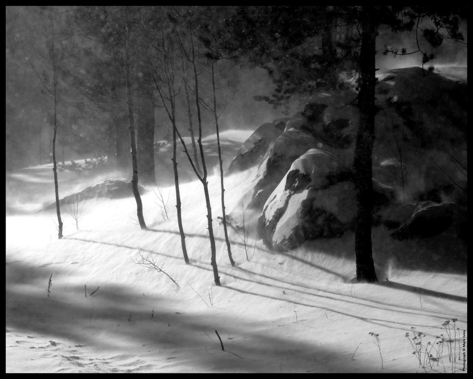 winter sceane 16x20 2 2019.jpg