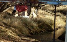 Homeless on The St Vrain 3744.jpg