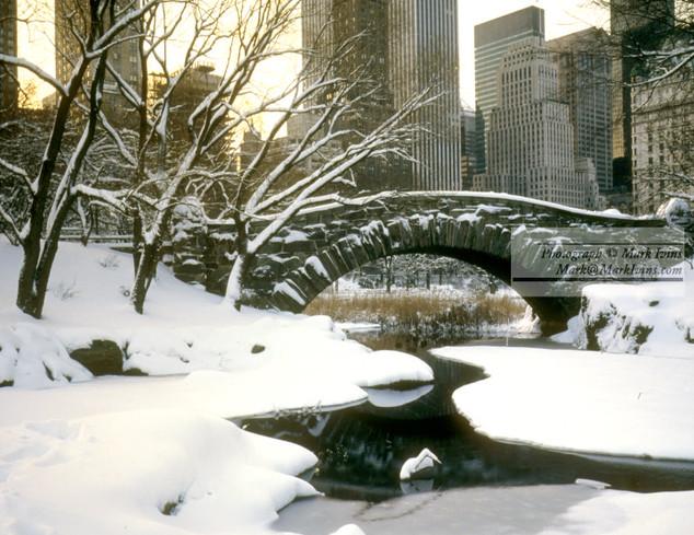 Central_Park_Winter.jpg