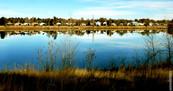 Golden Ponds 3803 - Copy.jpg