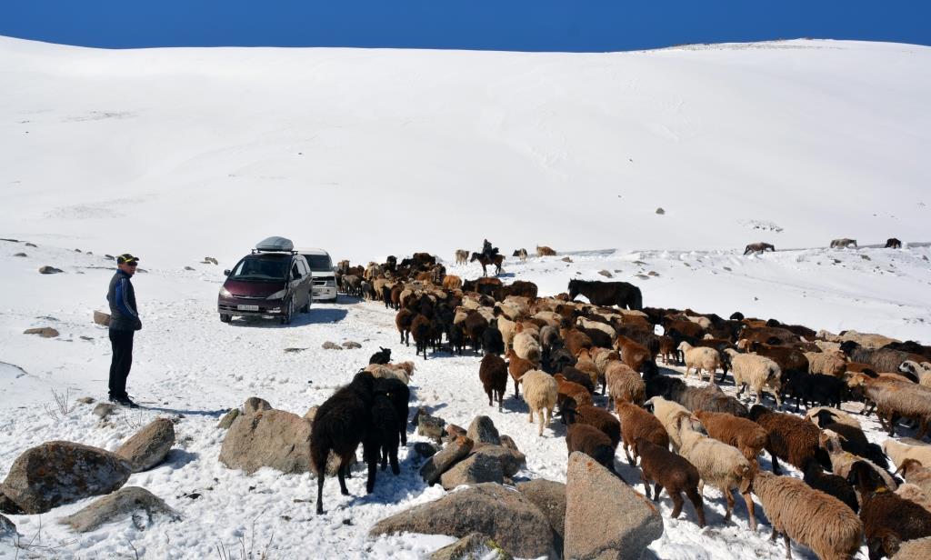 kirghizistan trek