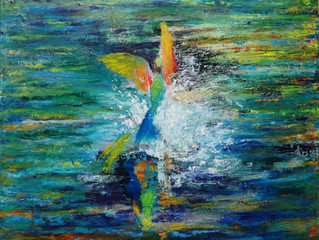 My painting RAINBOW BEE EATERS BATHTIME selected for TASTE OF ART exhibition at Noosa Regional Galle