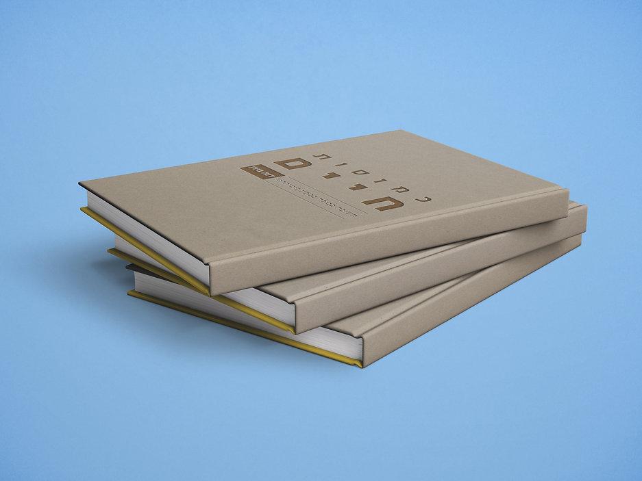 הדמיה של הספר.jpg