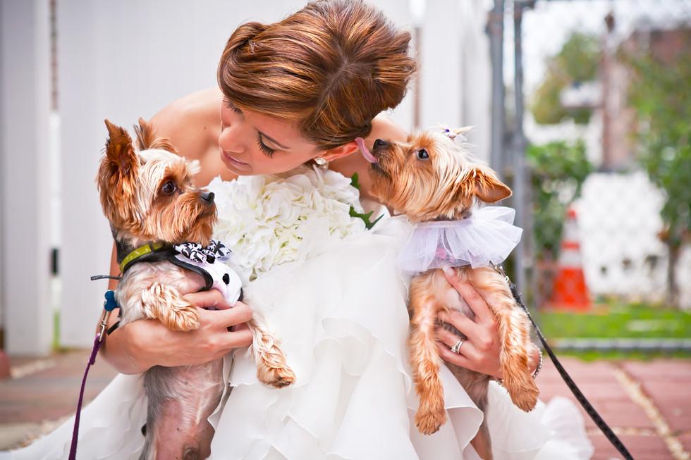Alicea_wedding-9818.jpg