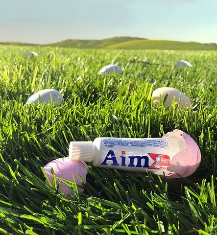 aim-easter-egg-1.jpg
