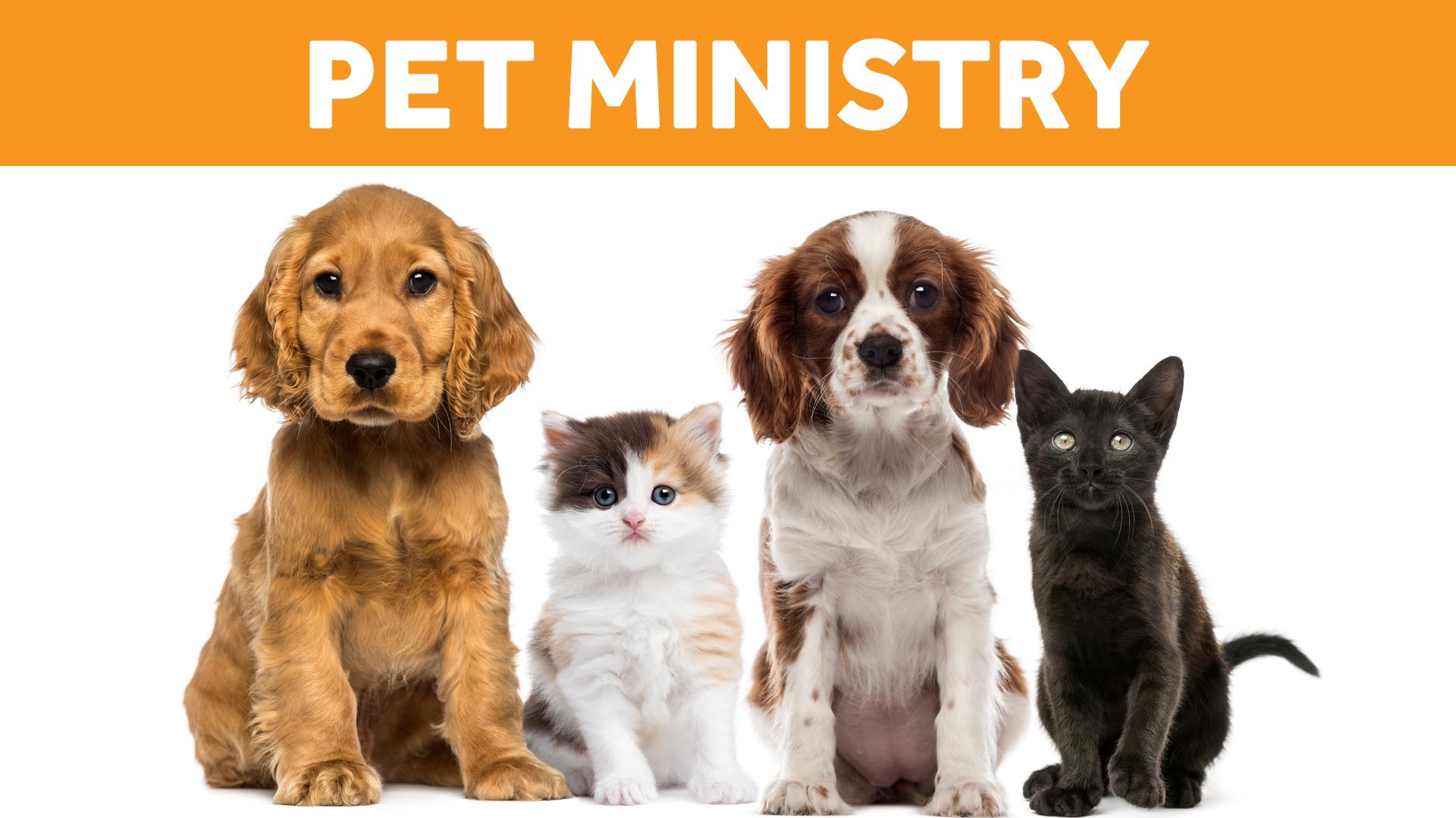 PetMinistry_Web