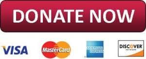 Donate Now 2.jpg
