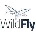Formation professionnelle WildFly de Digital Growing