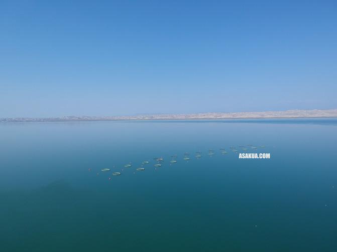 Balık çiftliği projesi