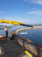 Modular pontoon with hydraulic crane