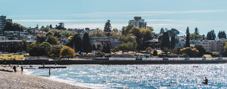 Photo of Trees and Houses at Kitsilano Beach in Vancouver, Canada.jpg