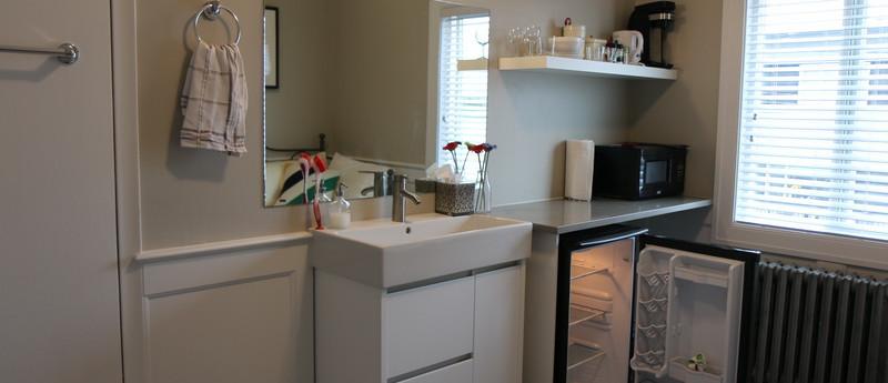 Room 6 Kitchen & Fridge_resize.JPG