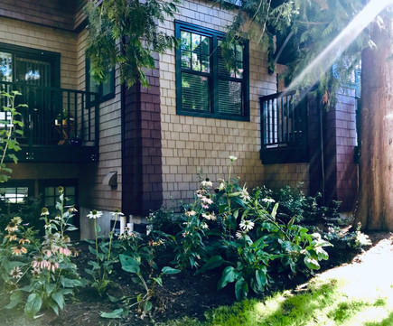 Gertie's House