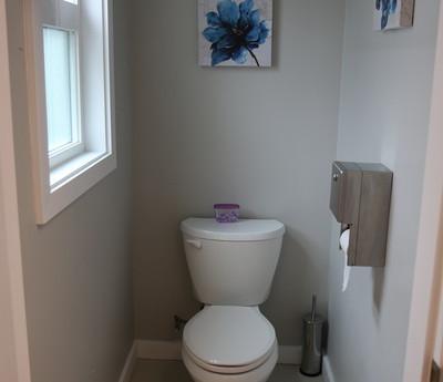Toilet Blue Flowers_resize.JPG