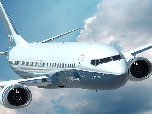 Boeing 737-800NG  From