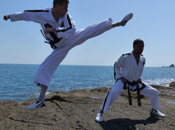 Flying Reverse Turning Kick