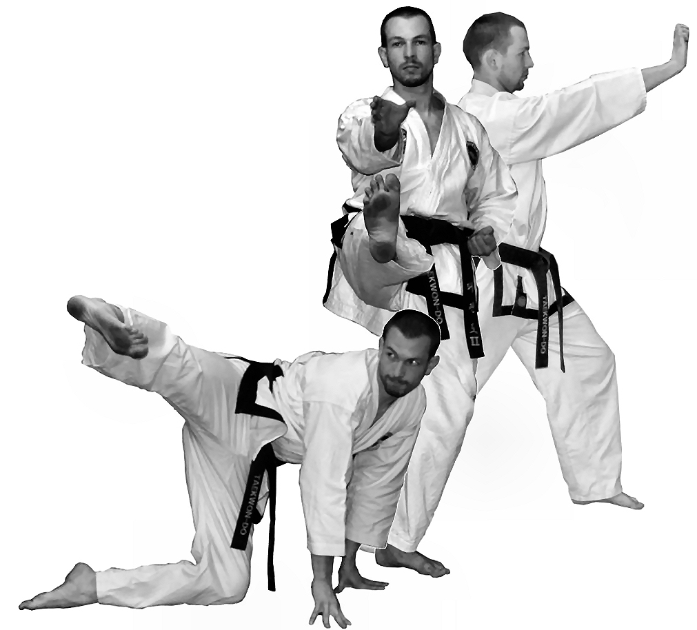 Mr Avis - Choong-Jang techniques