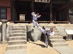 Training at the school of Toi-Gye
