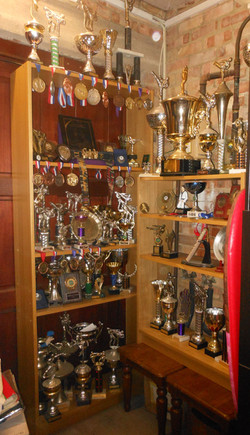 Some of Mr Anslows medals & trophies