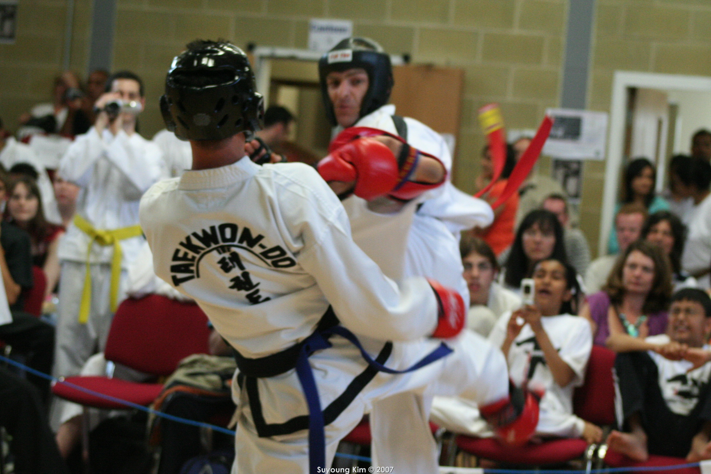 Mr Avis, Sparring, 2007