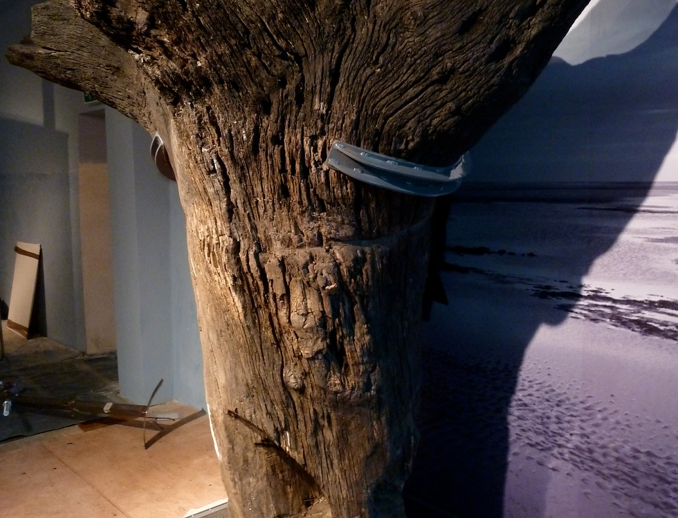 Seahenge - Norfolk Museums