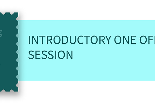 Introductory one off session