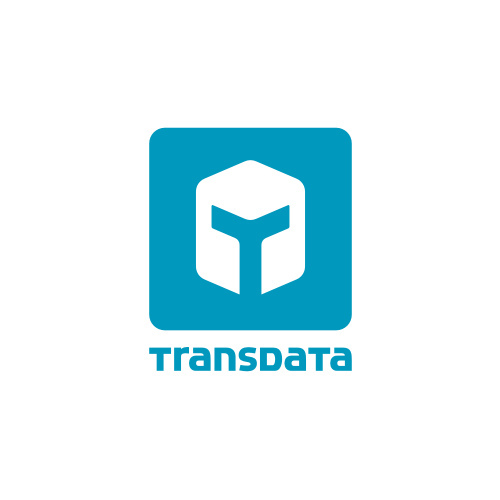 Transdata Cargas Complexas