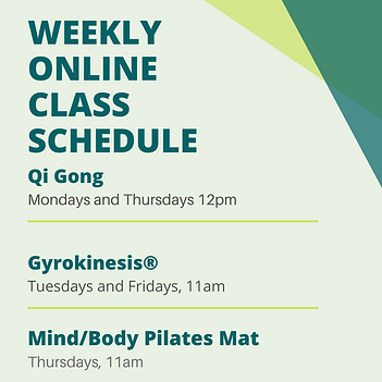 Weekly online class schedule.png