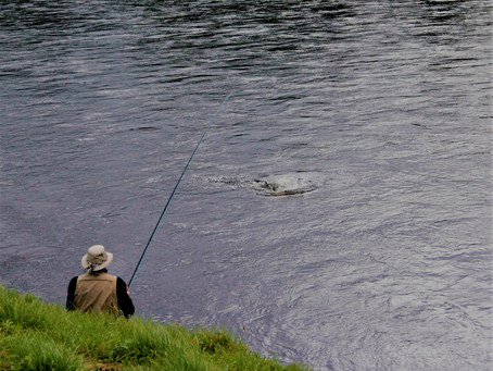 Update on Fishing at Kincardine
