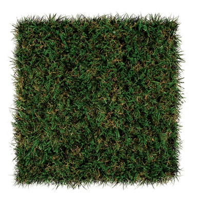 SportsGrass® Edge XP