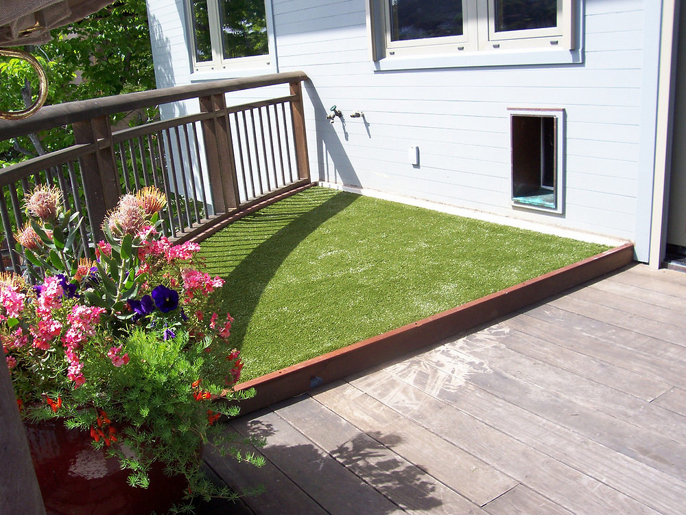 Artificial Turf on Pet Patio