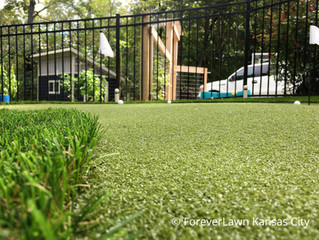 ForeverLawn Offers Responsible Landscaping and Green Alternative